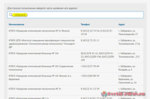 Запись к врачу Хабаровск - инструкция шаг4