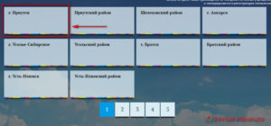 Запись к врачу Иркутск - инструкция шаг1